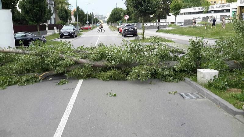 Sobotní bouřky zasáhly i jižní Moravu. Nejčastěji hasiči řeší popadané stromy.