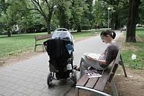 Spoustu příležitostí, jak si odpočinout nebo protáhnout těla, nabízí park Schreberovy zahrádky v brněnských Černých Polích. Vznikl ze zahrádkářské kolonie stojící na bývalém hřbitově.