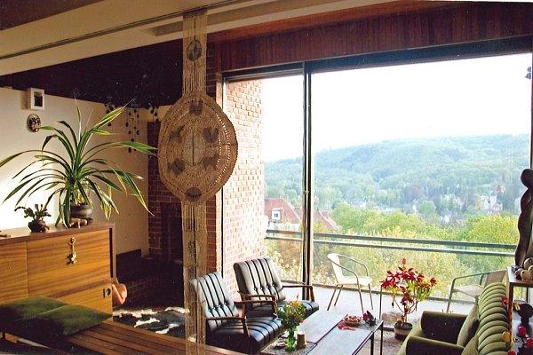 Architektu Josefu Němci se podařilo svůj dům vbrněnské Masarykově čtvrti výtečně umístit. Zobytné místnosti je nádherný výhled na Pisárky. Stavba je inspirovaná funkcionalistickým slohem.