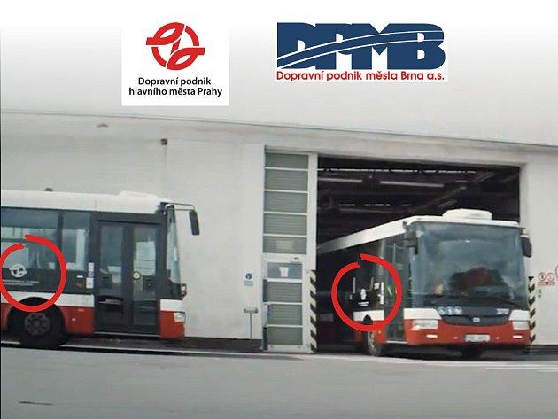 Autobusy nesou logo pražského dopravního podniku.