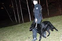 Kristýnku hledá policie i psovodi
