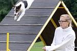 Štěkání, potlesk nebo hlasité povzbuzování. To všechno je v neděli dopoledne slyšet poblíž pavilonu Anthropos v brněnské čtvrti Pisárky. Sportovce na nedalekém fotbalovém hřiště na celý víkend vystřídali zvířecí závodníci na akci Brněnské psí dny.