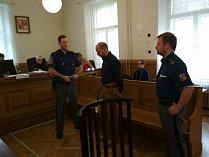 Pavel Fajta dostal za vraždu důchodkyně dvanáctileté vězení.