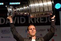 Českou reprezentaci posílí na mistrovství světa i vítěz Stanley Cupu David Krejčí.