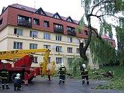 Odstranění nalomeného stromu v Brně-Slatině.