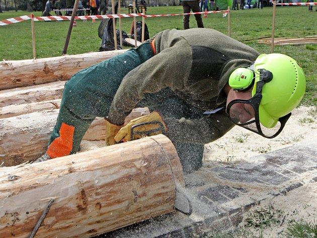 Studenti Mendelovy univerzity bojují v mezinárodní soutěži lesnické všestrannosti.