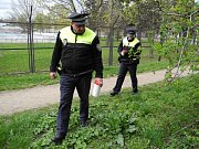 Akce Jehla v Brně. Strážníci hledali na veřejných místech použité injekční stříkačky.