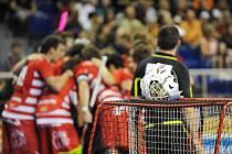 Florbalisté Bulldogs Brno - ilustrační foto.