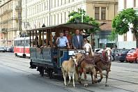 Historická koněspřežná tramvaj v Brně.