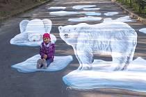 V brněnské zoo se lidé vyfotí s trojrozměrnou malbou medvěda. Určili k tomu speciální bod, ze kterého malba působí plasticky.