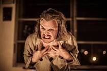 Brněnský herec Filip Teller ve hře ztvární Hanse, přítele cikánského boxera Johanna Trollmanna, který vypráví jeho smutný příběh. Německým šampion kvůli romskému původu skončil v koncentračním táboře, kde ho zavraždili.