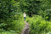 Na pěšině lidé poznají, jak rychle roste les