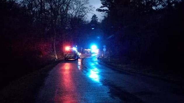 Mladá řidička u Želešic dostala smyk a s autem narazila do stromu. Nepřežila