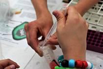 Na Mendel festivalu si lidé vyzkoušeli třeba extrahovat DNA ovoce.