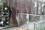 Hasiči v úterý dopoledne zasahovali u požáru kuchyňské linky v Pohořelicích na Brněnsku.