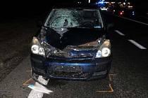 Střet s osobním autem nepřežil v pondělí krátce před půl osmou večer důchodce u Pasohlávek na Brněnsku. Zemřel ještě před příjezdem záchranářů.