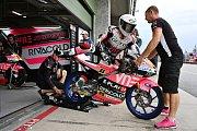 Brno 03.08.2019 - Moto GP 2019 - Romano Fenati