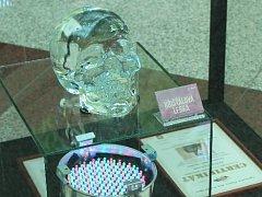 Kuriozity a rekordy z České republiky jsou od čtvrtka k vidění v obchodním centru Olympia.