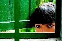 Film Mléko strachu peruánské režisérky Claudie Llosy je mrazivým dílem o ženách i dětech pokoušejících se vyrovnat s hrůznými následky válečných konfliktů. Snímek byl oceněn na Berlinale, za dva týdny zabojuje také o Oscara.