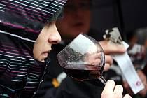 Dnes v 11 hodin se na náměstí Svobody otevřely láhve se Svatomartinským vínem.