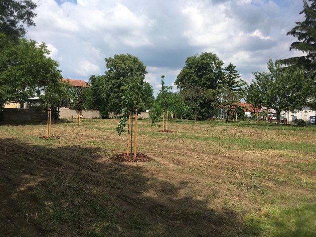 Nové stromy a květiny přibudou vparku ve vranovické Nádražní ulici. Okolí bytového domu, kterému místní přezdívali dům hrůzy, se promění vklidovou zónu.