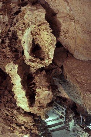 Jeskyně Turold uMikulova na Břeclavsku má jedinečné suché klima a výzdobu zkalcitů připomínajících mořskou pěnu. Rezervaci využívají jako zimoviště chránění netopýři. Vnedalekém lomu najdou turisté geopark.