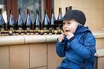 Milovníci vína putovali ze sklepa do sklepa. Setkali se ve Velkých Bílovicích.