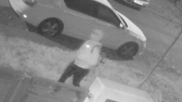V noci na úterý se zatím neznámý pachatel vloupal do domu spícího majitele v brněnském Králově Poli. Policie žádá veřejnost o pomoc.
