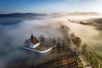 Lipová alej u brněnského hradu Veveří.