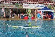 Brněnský krytý bazén za Lužánkami slavil v neděli čtyřicáté výročí od vzniku. Lidé měli po celý den vstup zdarma, v bazénu na ně čekaly různé atrakce. Zájemci si zkusili třeba paddleboard, nebo skoky do vody pod vedením zkušených instruktorů.