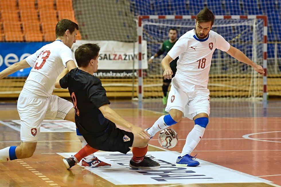 10.11.2020 - kvalifikae na mistrovství světa mezi Českou republikou v bílém (Tomáš Vnuk) a Chorvatskem
