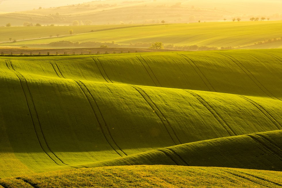Zvlněná krajina v okolí Kyjova na Hodonínsku.