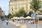 Nová výzdoba brněnského náměstí Svobody.