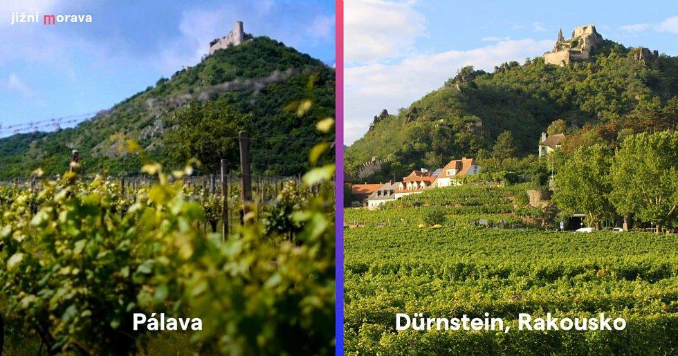 Pohledy přes vinice na zříceninu hradu Děvičky na Pálavě a zříceninu hradu Dürnstein v Rakousku.