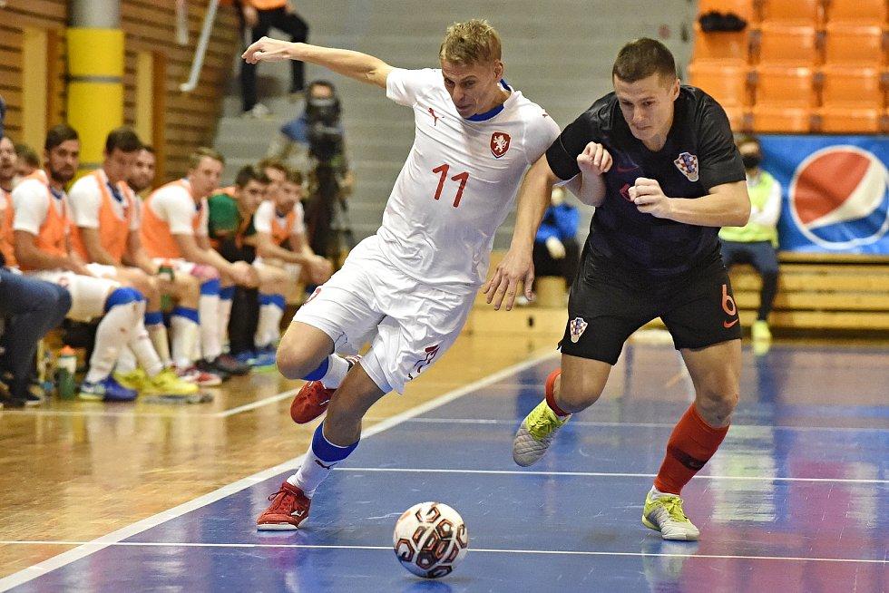 10.11.2020 - kvalifikae na mistrovství světa mezi Českou republikou v bílém (David Drozd) a Chorvatskem (Maro Djuraš)