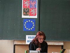 Eurovolby 2009 - ilustrační fotografie.