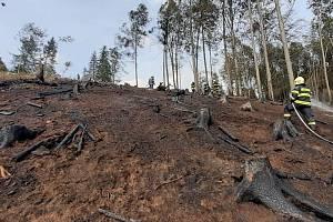 Zásahy dobrovolných hasičů z celého Česka mohou lidé ocenit v anketě.