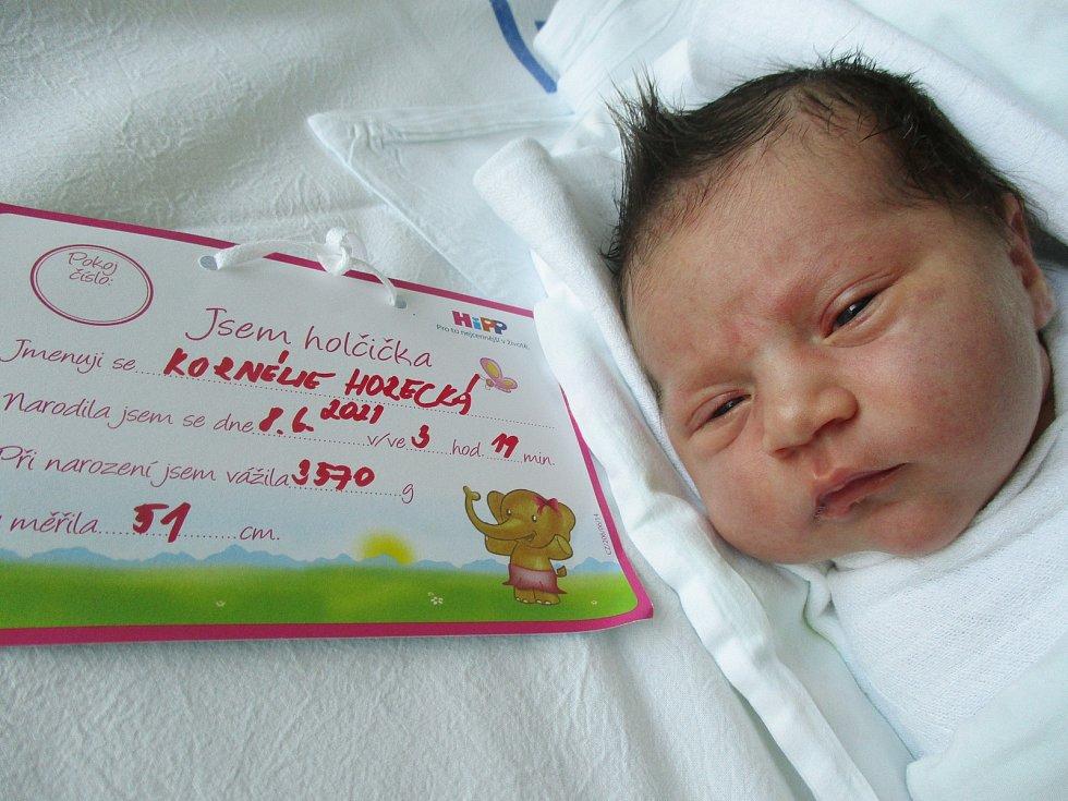 Kornélie Horecká, 8. června 2021, Nový Přerov, Nemocnice Břeclav, 3570 g, 51 cm