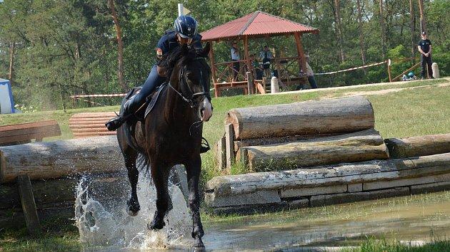 Přeskočit a přebrodit. Policejní jezdci na koních soutěžili ve skokovém derby