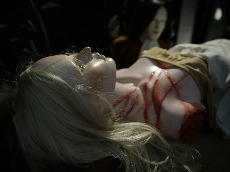 Podívaná pro ty, kteří se rádi bojí. Výstava o krvavé historii představí reálné historické postavy toužící po lidské krvi a bolesti. Vlad III. Dracula, Půta Švihovský, Alžběta Báthory, Anna Rosina Listius, Kateřina z Komárova a další.