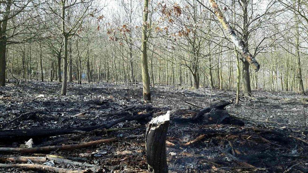 U Oslavan i ve čtvrtek hořel les