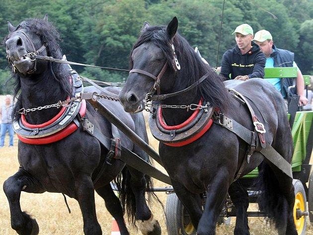 Na závodišti u Moravského Plynostavu v Rosicích na Brněnsku předvedlo svůj um několik desítek zkušených soutěžících.