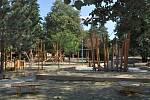 Park Kneslova v brněnských Černovicích.