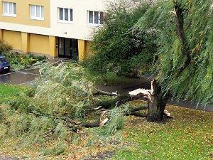 Strhané reklamy, spadené stromy. Silný vítr z Polska řádil na jižní Moravě