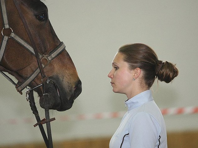 Koňská show v Moravanech.