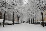 Brněnští silničáři bojují s přibývajícím sněhem.