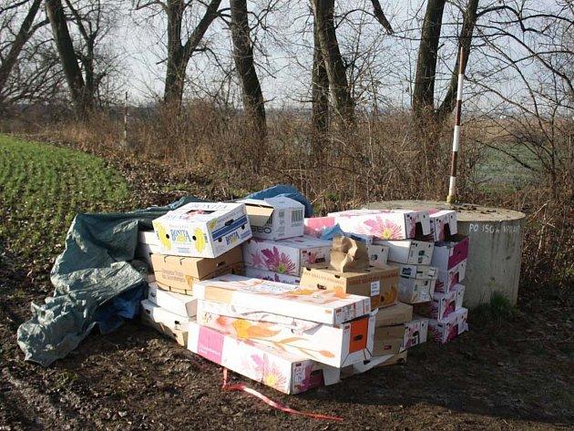 Policisté v krabicích objevili vánoční a velikonoční dekorace.