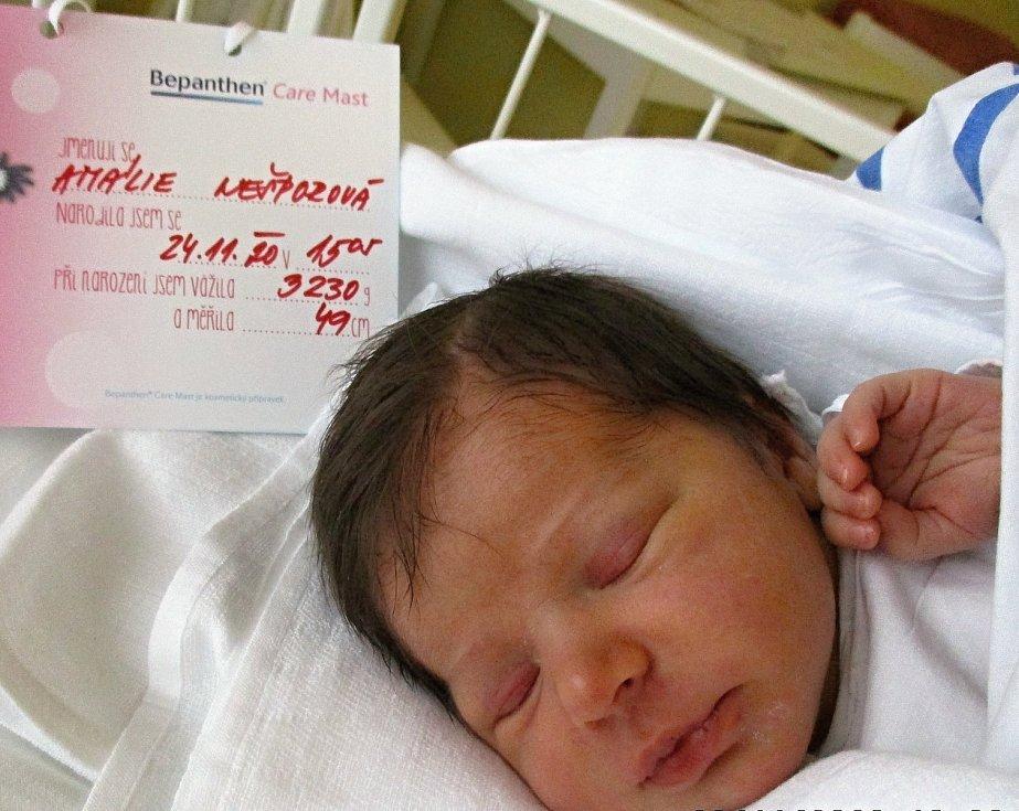 Amálie Nešporová, 24. 11. 2020, 3230 g, 49 cm, Hrušky, Nemocnice Břeclav