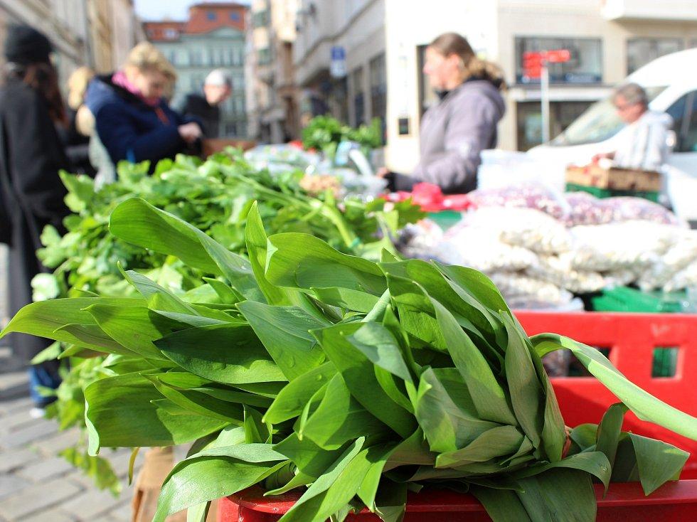 Na Zelný trh v Brně se opět vrátí prodejci.