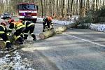I ve středu hasiče zaměstnával silný vítr. Zasahovali u téměř devadesáti událostí.